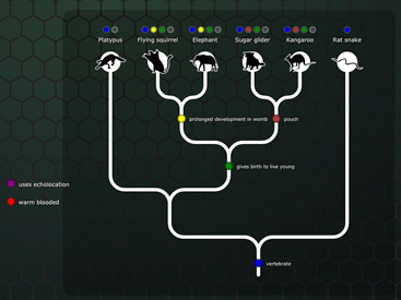 The Evolution Lab | NOVA Labs | PBS